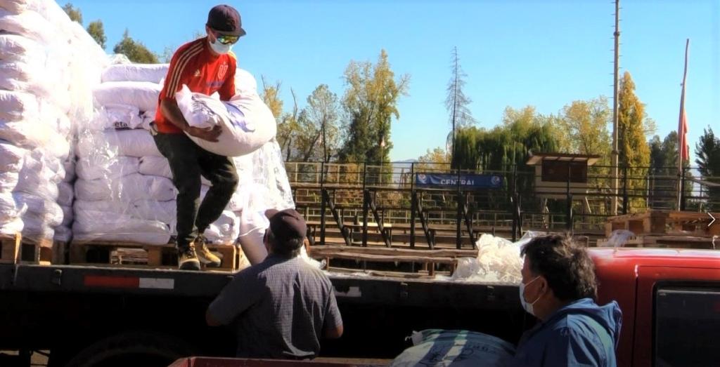 Usuarios de Prodesal Calle Larga recibieron importante ayuda para enfrentar los meses de invierno